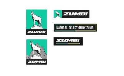 zumbi limited decal set